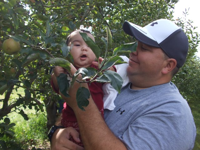 """This is Hannah (with Daddy) picking her """"apples of gold."""""""